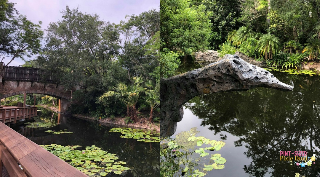 Animal Kingdom Quiet Spots