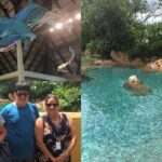 8 Tips for Visiting Discovery Cove In Orlando, Florida
