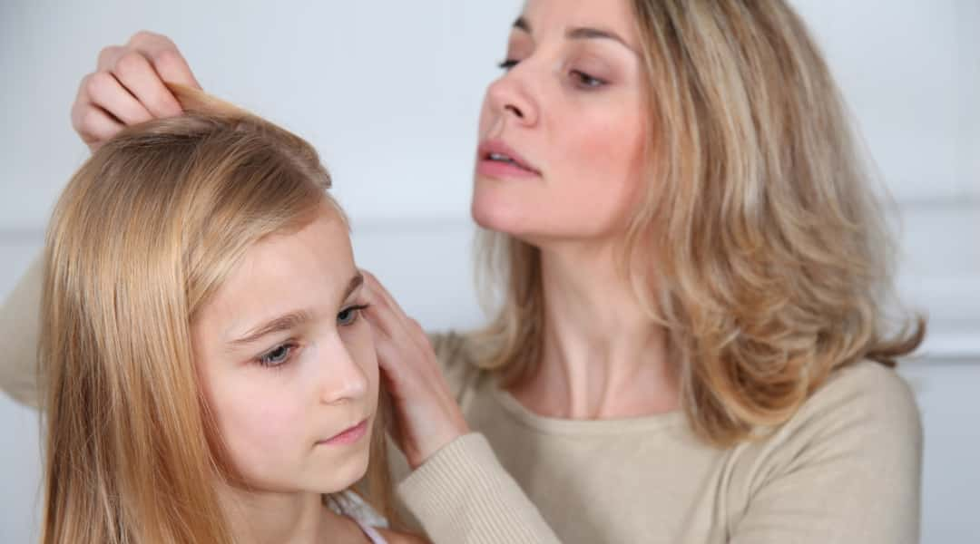 What to do When Your Child Has Lice
