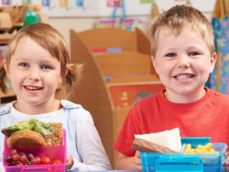 preschool lunch ideas 1