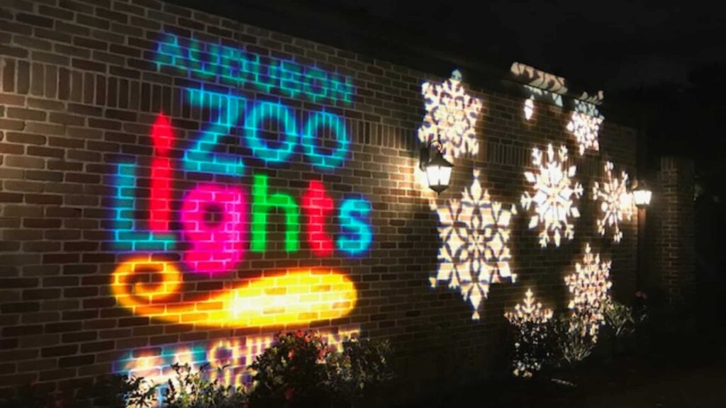 zoo lights at audubon zoo