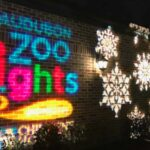 Tips for Taking the Family to Zoo Lights at Audubon Zoo