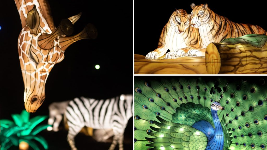 Zoo Lights at Audubon Zoo New Orleans